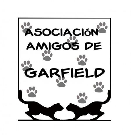 Amigos de Garfield