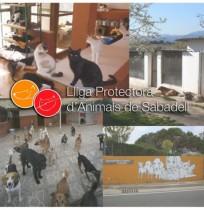 Lliga Protectora d'Animals de Sabadell