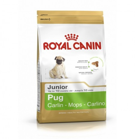 Royal canin carlino junior