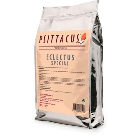 Psittacus eclectus special