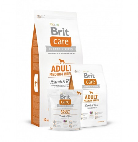 Brit care adult medium breed (cordero y arroz)