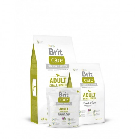 Brit care adult small breed (cordero y arroz)