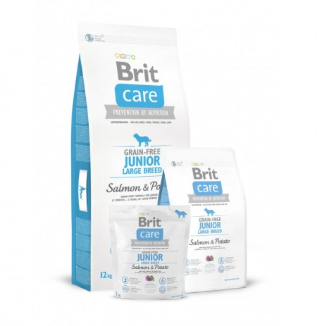 Brit care grain free junior large breed (salmón y patata)