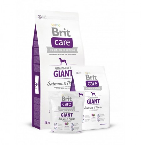 Brit care grain free salmón giant breed (salmón y patata)