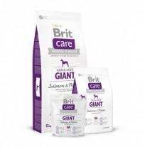 Brit care grain free salmón giant breed (salmón y patata)