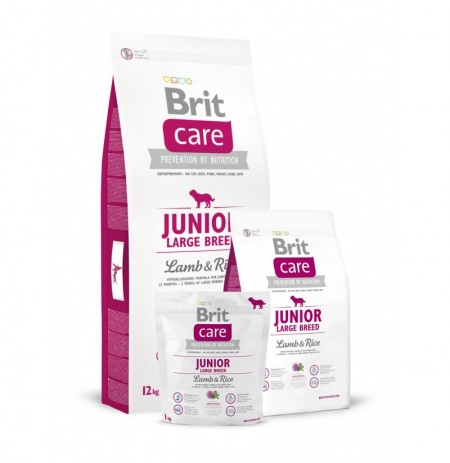 Brit care junior large breed (cordero y arroz)