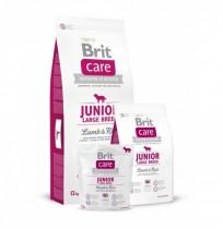 Brit care junior large breed (cordero y arroz)