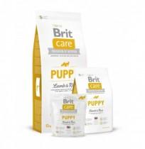 Brit care puppy all breed (cordero y arroz)