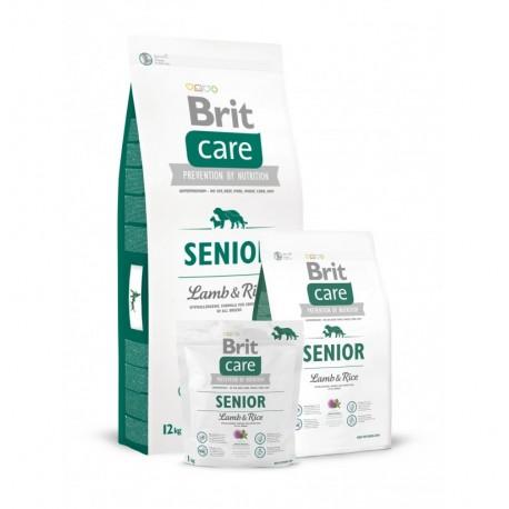 Brit care senior all breed (cordero y arroz)