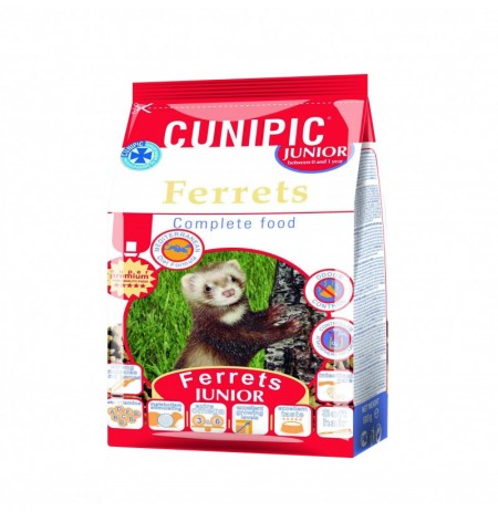 Cunipic pienso huron baby