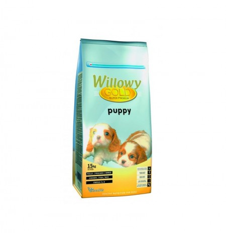 Willowy gold puppy (cachorros)
