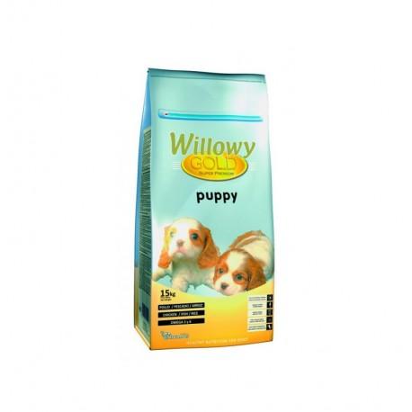 Willowy gold puppy (cachorros)