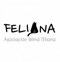 FELIANA (Asociación felina de l'Eliana)